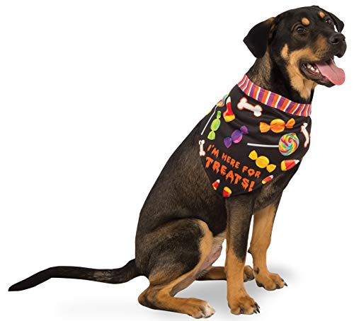 Rubie's Here for the Treats Dog Bandana]()