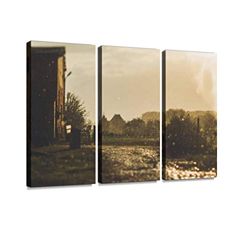 (Cobblestone on a Farm After rain in Sunset Light Print On Canvas Wall Artwork Modern Photography Home Decor Unique Pattern Stretched and Framed 3 Piece )