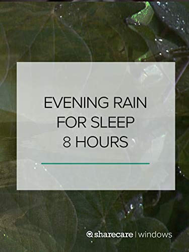 Evening Rain for Sleep 8 hours