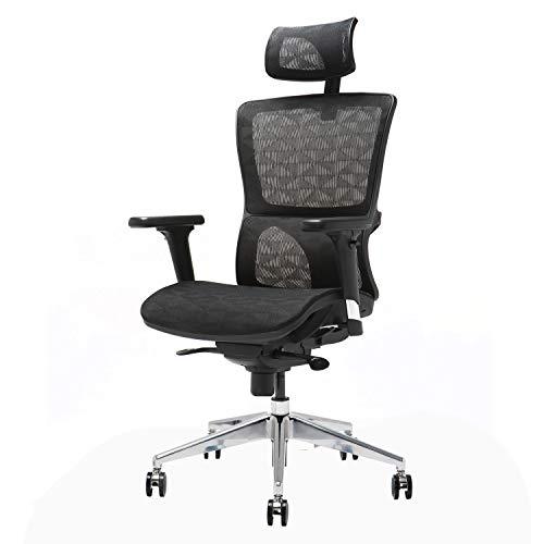 Ergonomic Mesh Office Chair, Ensien - Multidirectional Adjustable Armrest - Various Modes Flexible Back - Height and Angle Adjustment Headrest - Breathable Elastic Cloth - Desk Chair for Work or Rest ()