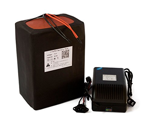 72V 20AH Lithium LiFePO4 Battery Power Pack +BMS 3A Charger For Ebike Scooter Electronic Rechargeable Powerful