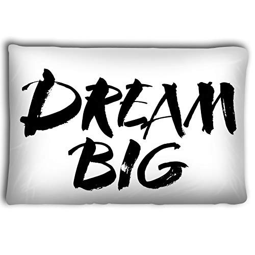 Mizongxia Pillow Cases Dream Big Card Ink Illustration Modern Brush Calligraphy Isolated White Background Vector Illustration Dream Big Card Ink 2030inch