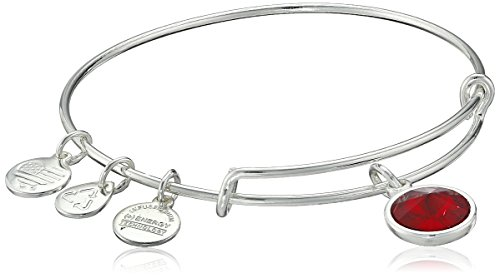 2. Alex and Ani Bangle Bar Imitation Birthstone Bangle Bracelet