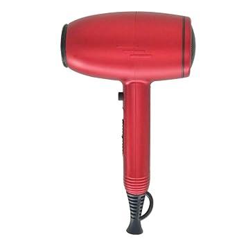 Secador de Pelo de Alta Potencia de Hammer Hogar Temperatura Constante de Aire Caliente y Frío Negativo Ion Hair Care Secador de Pelo 2300 W (Color : B): ...