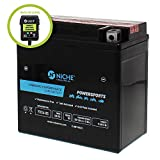 NICHE AGM Replacement Battery for YTX14-BS with 12V 750mA Maintainer Charger | 240CCA, 12V, Self Activated | ATV, Motorcycle, Scooter | For Honda, BMW, Kawasaki & more