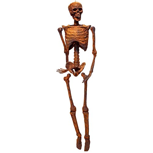(Halloween Haunters 5 Foot Life Size Realistic Burnt Skeleton Corpse Prop Decoration - Scary Rotten Flesh Human Mummy Bones Skull, Hands, Feet, Arms, Legs - Haunted House Graveyard Tombstone Display)