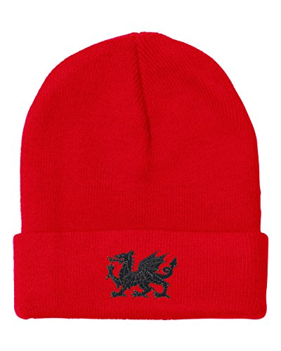 welsh red dragon - 3