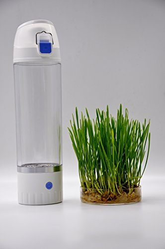 Hydrogen Rich Water Generator - Drinking Hydrogen Water Antioxidant Health Benefits Hydrogenated Water