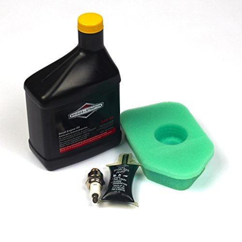 Briggs & Stratton 5107B Tune-Up Kit