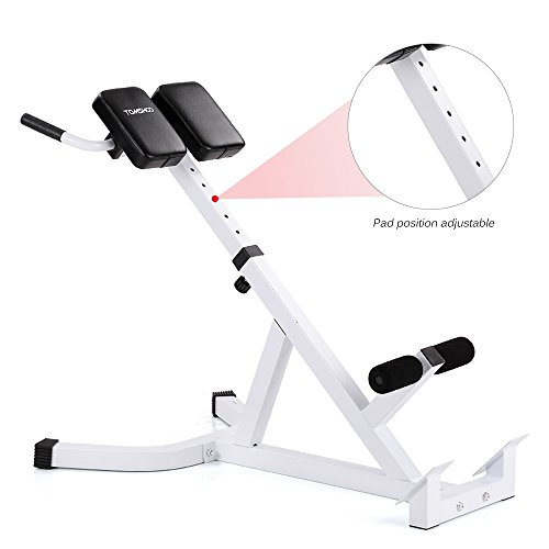 TOMSHOO Adjustable Hyperextension Roman Chair, Multi Workout Abdominal Back  Extension Exercise AB Bench Home Gym