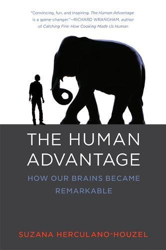 Download The Human Advantage: How Our Brains Became Remarkable (The MIT Press) pdf epub