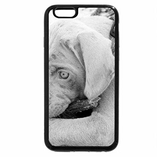 iPhone 6S Case, iPhone 6 Case (Black & White) - Dog