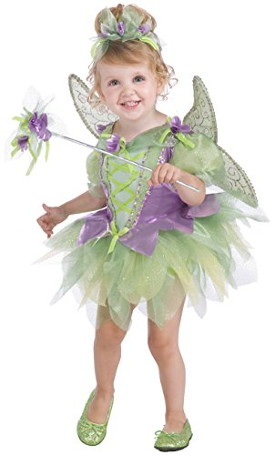 Rubie's Costume Co Deluxe Tutu Fairy Costume, Purple and Green, Toddler