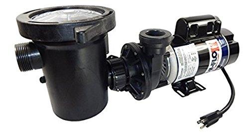 Waterway Plastics PH2150-6 1.5 hp 2-Speed 3450/1725 RPM, 115V Above Ground Pool Pump with Large Debri ()