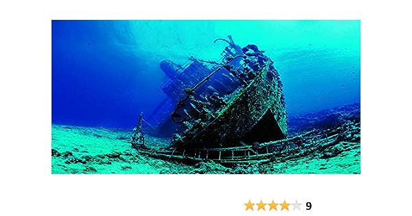 VIP.LINE Water Plants Aquarium Background Poster HD Fish Tank Decorations Landscape