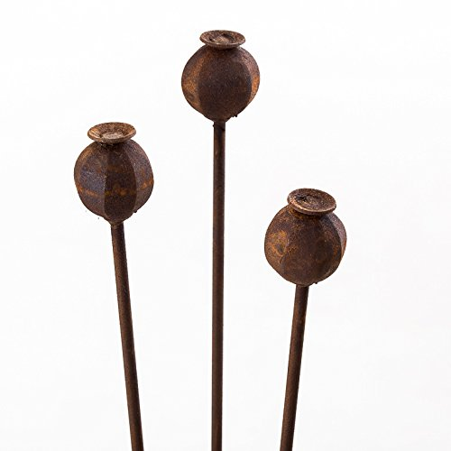 150cm Tall Handmade Poppy Seed Head Plant Support Border Stakes In Natural Rust (Set of 3) The New Eden