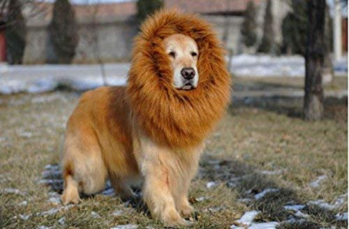 MiLuck Promotion!!! Lion Mane Wig for Dog