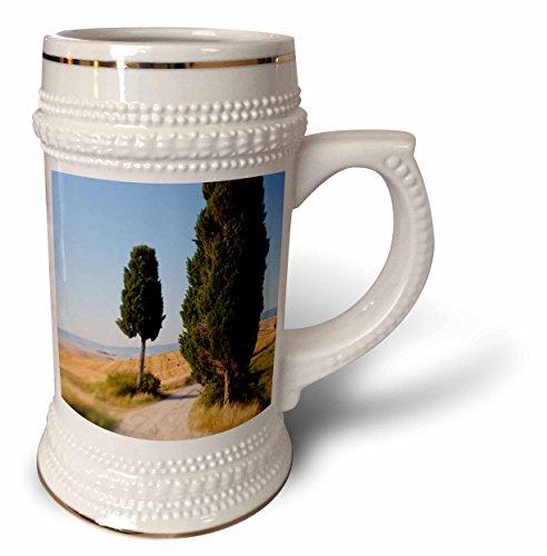 danita-delimont-italy-winding-road-val-d-orica-tuscany-italy-22oz-stein-mug-stn-227671-1