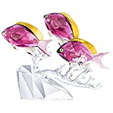 Swarovski Anthias Fish Trio Clear