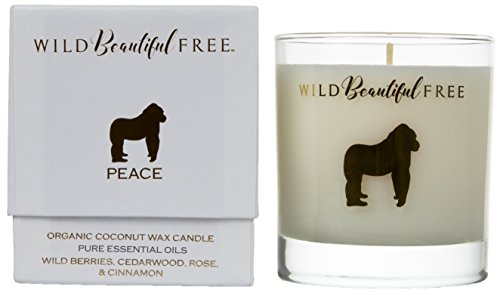 Wild Beautiful Free Wild Berry Rose and Spice Organic Aromatherapy Candle with Pure Essential Oils for Balance and Anxiety Relief - Peace Gorilla Luxury Candle by Berry Scented Wax