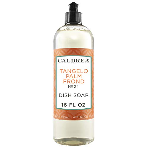 Caldrea Dish Soap, Tangelo Palm Frond, 16 oz