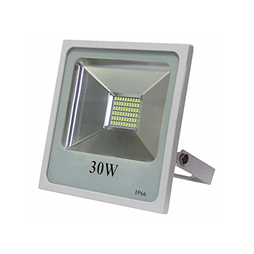 Proyector led 30w 4000k Smd Quiron Blanco: Amazon.es ...