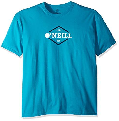 O'Neill Men's Standard Fit Logo Short Sleeve T-Shirt, Rockwell Ocean, M - Logo Standard Fit T-shirt
