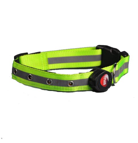 Aviditi BC302-L LED Lighted Dog Collar, Green with Green LED Lights, Large, My Pet Supplies
