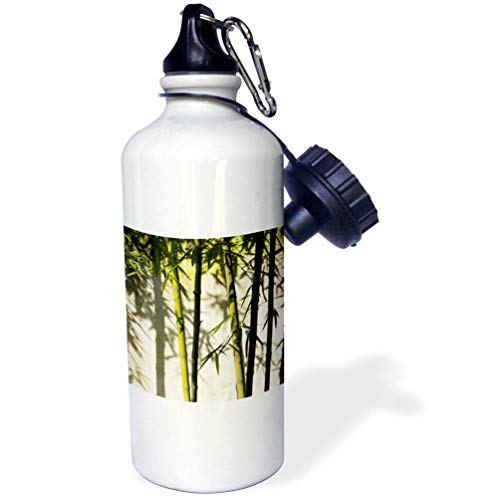 3dRose Danita Delimont - Patterns - Bamboo Casting Shadow on The Wall in Garden, Suzhou, Jiangsu, China - 21 oz Sports Water Bottle - Jiangsu Suzhou China