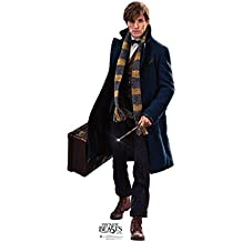 Newt Scamander - Fantastic Beasts and Where to Find Them (2016 Film) - Advanced Graphics Life Size Cardboard Standup