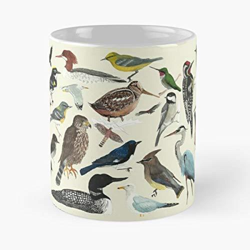 Birds Bird Black Throated Blue Blackburnian - Best Gift Mugs Winged Warbler Great Heron Northern Parula Phoebe Gull Nuthatch Robin Redstart ()