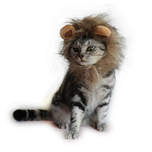 Cat Apparel Lion Mane for Cat Lion Hair with Ears for Halloween Christmas Easter Festival Cosplay Party Activity Pet Costume by AISOMA (Blending Fine hair) ()