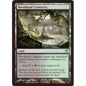 MTG DOMINARIA kaartspellen Woodland Cemetary