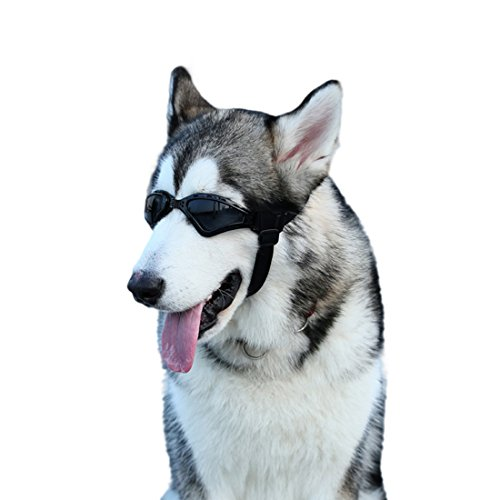 GabeFish Pets Adjustable Strap UV Protective Sunglasses For Medium Large Dogs Cats Cool Fashion Eyewear Goggles Black