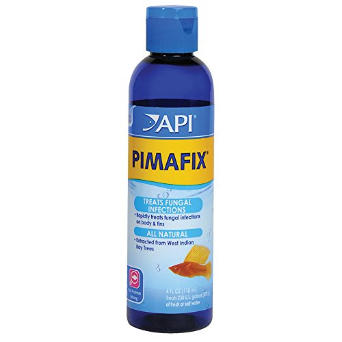 API PIMAFIX Antifungal Freshwater and Saltwater Fish Remedy 4-Ounce Bottle