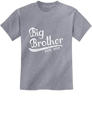 Tstars - Gift for Big Brother 2019 Siblings Gift Youth Kids T-Shirt Small Gray