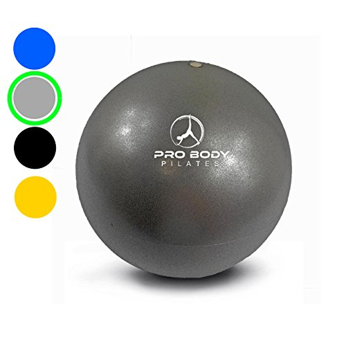 Core Training Ball (Mini Exercise Ball - 9 Inch Small Bender Ball for Stability, Barre, Pilates, Yoga, Core Training and Physical Therapy (Silver))
