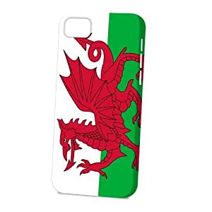 Case Fun Apple iPhone 5C Case - Vogue Version - 3D Full Wrap - Wales Flag hjbrhga1544