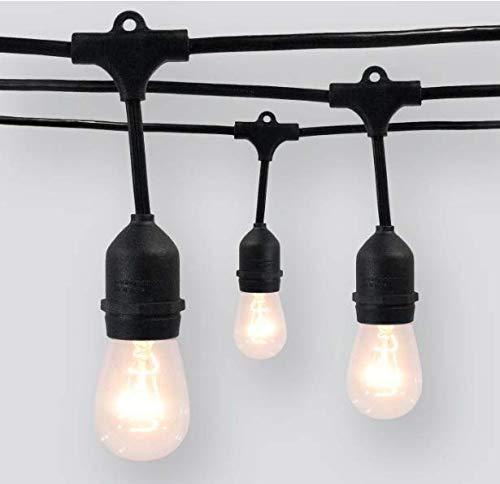 (Smith & Hawken 10ct Heavy-Duty Drop Outdoor String Lights - Threshold (Black))