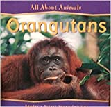 img - for Orangutans (All About Animals) book / textbook / text book
