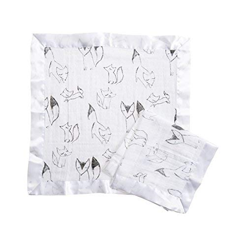 Aden by Aden + Anais Security Blanket 2 Pack, Trotting Fox