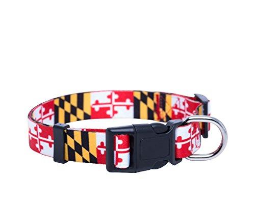 Native Pup Maryland Flag Dog Collar (Medium)