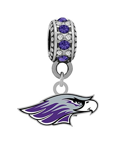 3/8 Inch Silver Logo Charm - Final Touch Gifts University of Wisconsin-Whitewater Logo Charm Fits European Style Large Hole Bead Bracelets