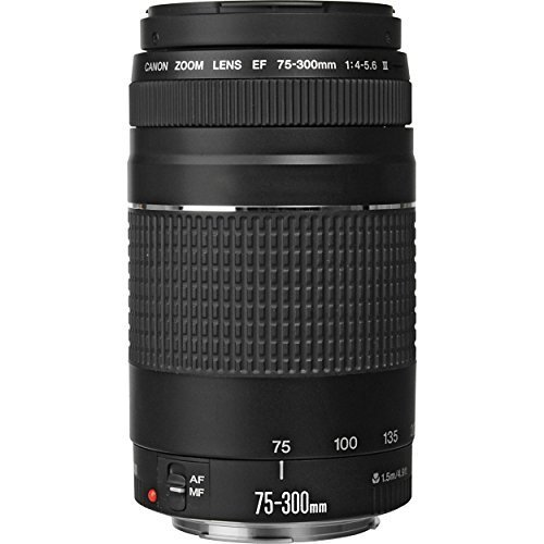 Canon EF 75-300mm f/4-5 6 III Telephoto Zoom Lens for Canon EOS 7D 60D EOS 70D Rebel SL1 T1i T2i T3 T3i T4i T5 T5i XS XSi XT & XTi Digital SLR Cameras with Accessories