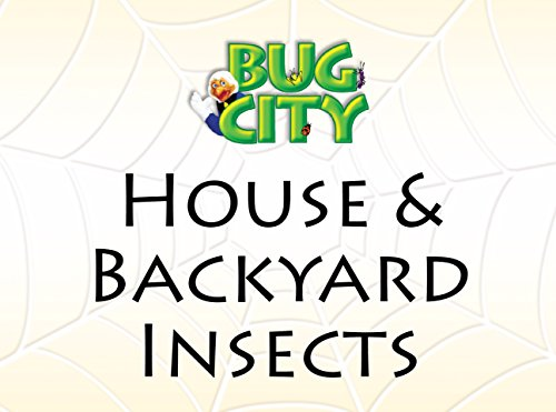 house-backyard-insects