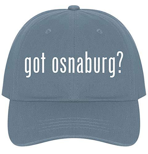 Fabric 30 Yard Bolt - The Town Butler got Osnaburg? - A Nice Comfortable Adjustable Dad Hat Cap, Light Blue