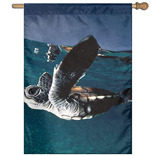 "Garden Flag Skyscape Turtles Lawn Banner Outdoor Yard Home Flag Wall Decoration Flag 27"" X 37"""