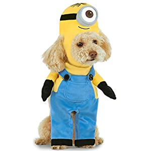 Minion Stuart Arms Pet Suit, Large
