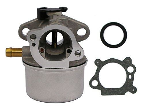 carburetor briggs and stratton - 4