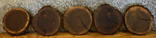 10- Black Walnut Natural Edge Thin Cut Rounds/Log Sliced Value Pack 35001 T: 1''D: 10 3/4'' - (Sliced Log)